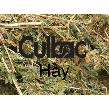 CULBAC HAY - LIQUID HAY TREATMENT