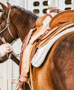 Saddles & Saddle Racks